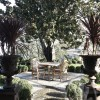 lotus peyzaj_landscpe design_outdoor living_garden_garden ornaments_pavig_pebble stone_magnolia_pots